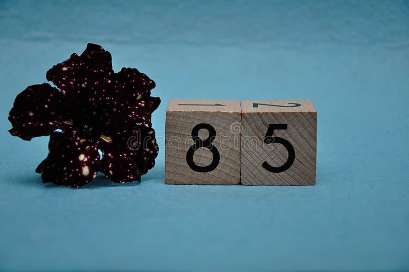 Número ochenta y cinco con una petunia púrpura foto de archivo libre de regalías