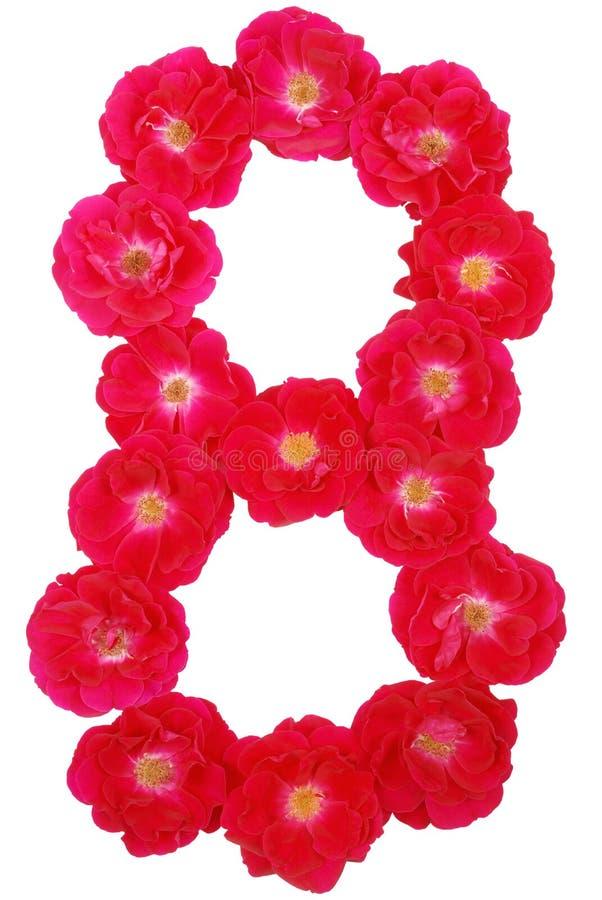 Número ocho presentado por las rosas imágenes de archivo libres de regalías