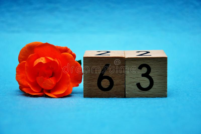 Número sesenta y tres con una rosa anaranjada imagen de archivo libre de regalías