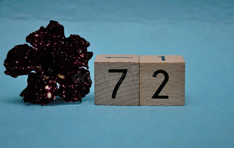 Número setenta y dos con una petunia púrpura imagenes de archivo