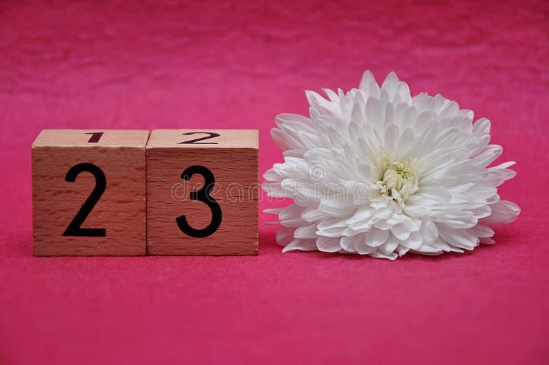 Número veintitrés con un aster blanco imagenes de archivo