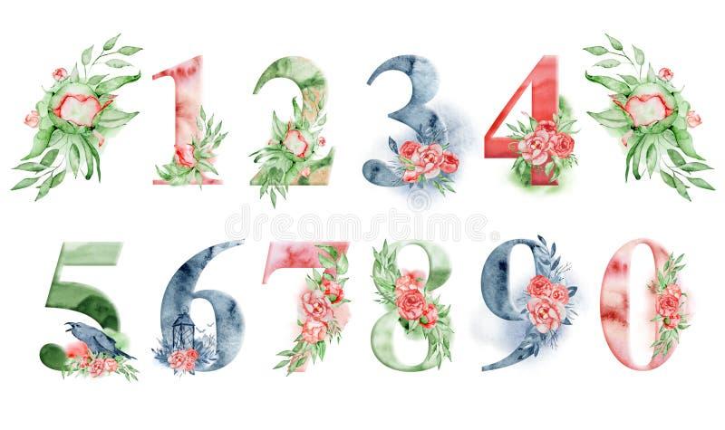 Números de la acuarela con las flores y los leves Sistema romántico para casarse invitaciones y tarjetas ilustración del vector
