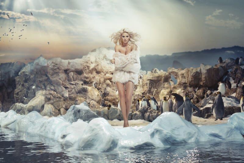 Nęcąca kobieta na lodowej wyspie z pingwinami obrazy royalty free