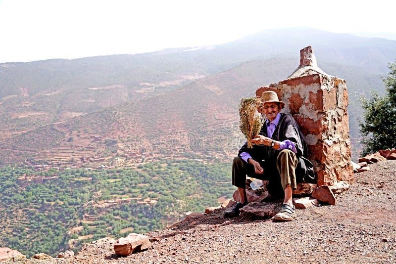 N bejaarde medische kruidverkoper op de weg van de atlasbergen in Marokko stock afbeelding