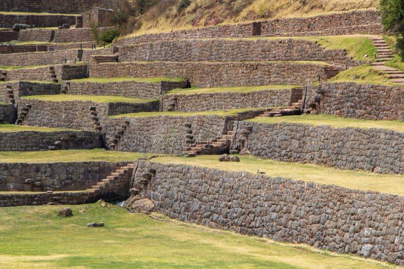 ³ n de Tipà da atração, Peru foto de stock royalty free
