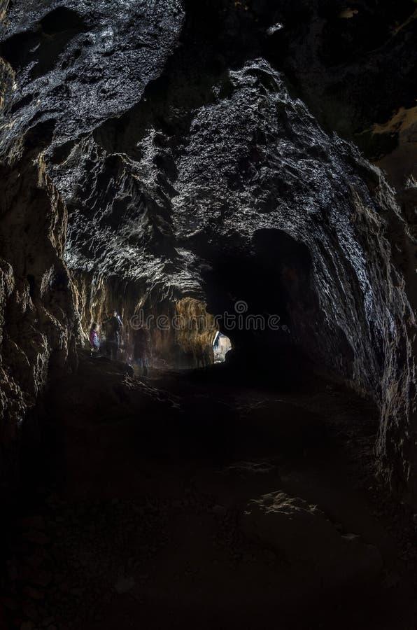 ³ n del RÃo Lobos för El Cañà Soria royaltyfria bilder