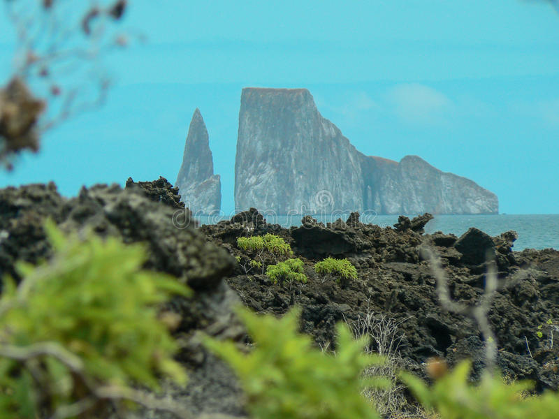 ³ n Dormido - roche de Leà de joueur Île de Galapagos, Equateur images libres de droits