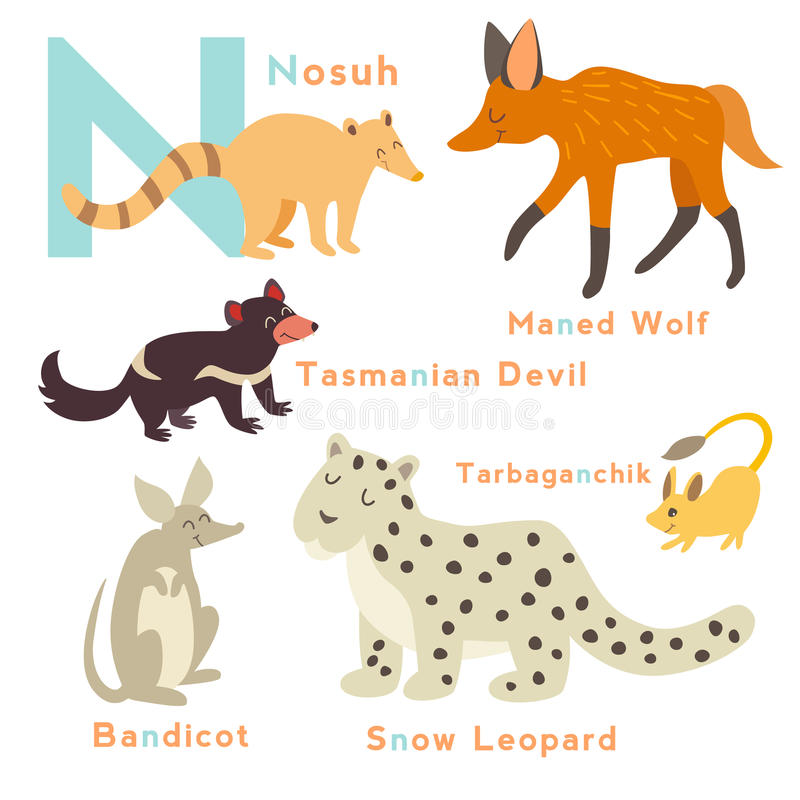 Animals Start From Letter N