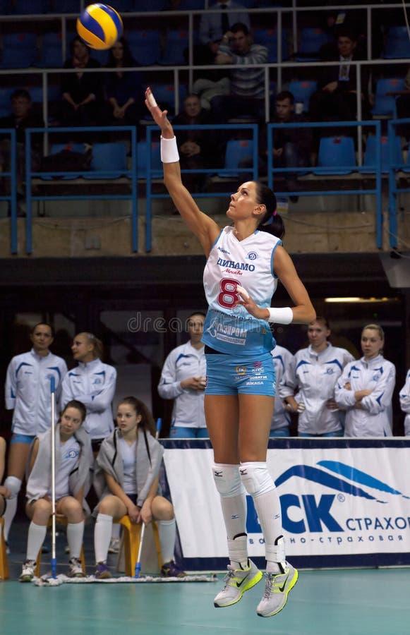 N. Obmochaeva stock photography