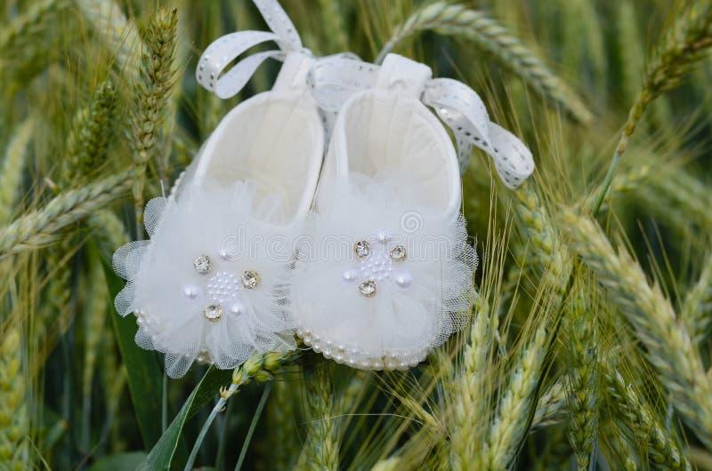 N?rbilden av nyf?tt behandla som ett barn vita skor f?r flickan i gr?nt vetelandf?lt under v?ren arkivbilder