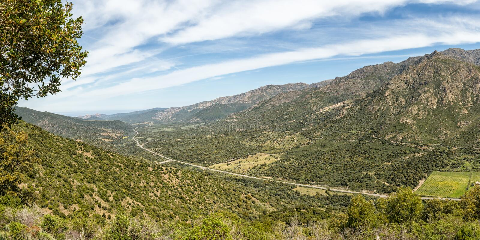 N197 road heads towards the coast in Corsica stock photos