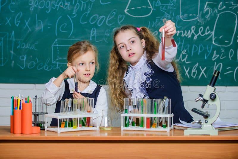 N?s amamos a ci?ncia Alunos que executam a experi?ncia na sala de aula da ci?ncia Cientistas das meninas que guardam os tubos de  foto de stock