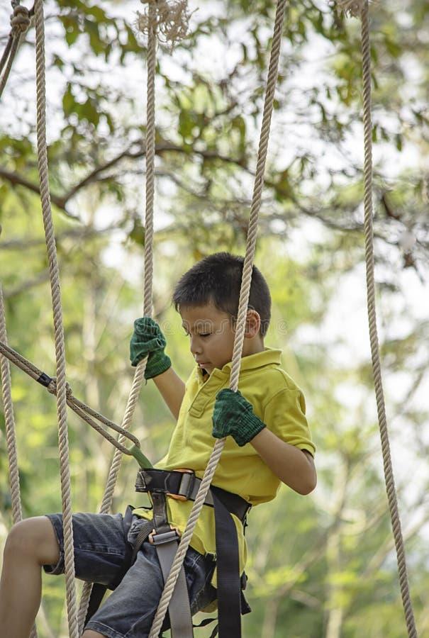 N?s do menino do Asean a corda e sorriso felizmente na ?rvore obscura do fundo da aventura do acampamento imagem de stock