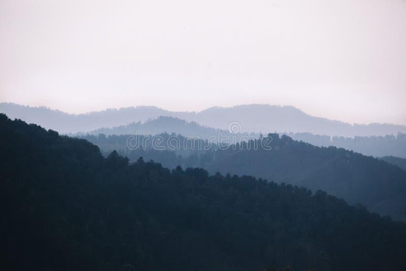 N?voa que cobre as florestas da montanha As silhuetas atmosf?ricas das montanhas na cor azul foto de stock royalty free