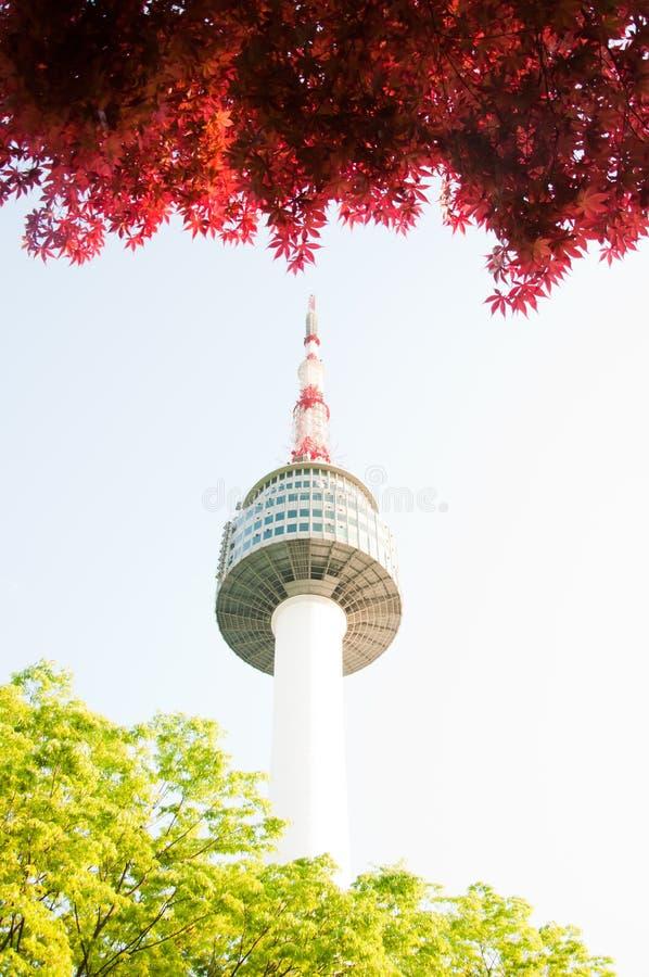 n wierza Seoul zdjęcia stock