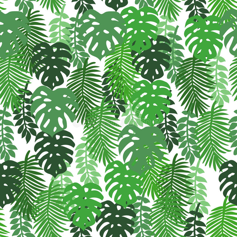Na białego tła tropikalnych liściach obraz stock