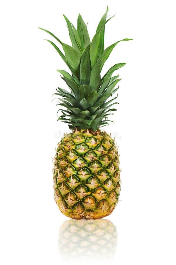 Na biały tle dojrzały cały ananas fotografia royalty free