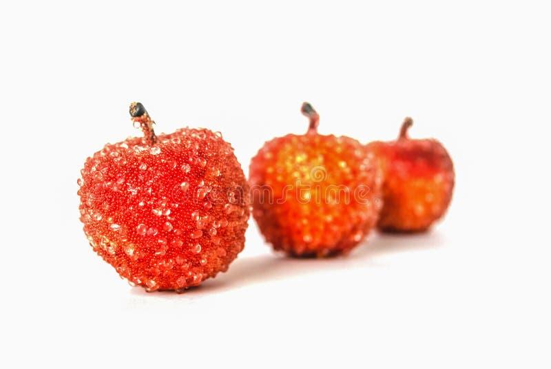 Na biały tle trzy czerwonego jabłka zdjęcia royalty free