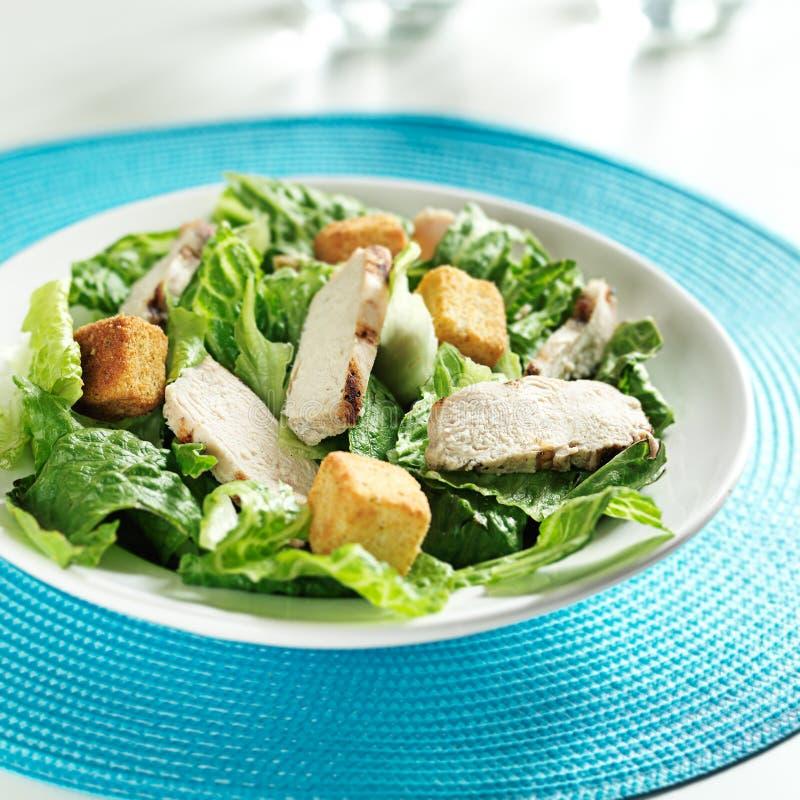 Na Caesar sałatce piec na grillu kurczak zdjęcia royalty free
