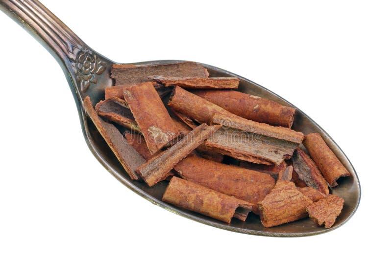 Na colher dourada velha há uma pilha pequena do alimento - partes de macro isolado do carvalho da canela casca seca foto de stock