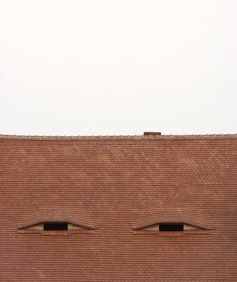 na dach transilvania chińskich oczu zdjęcie stock