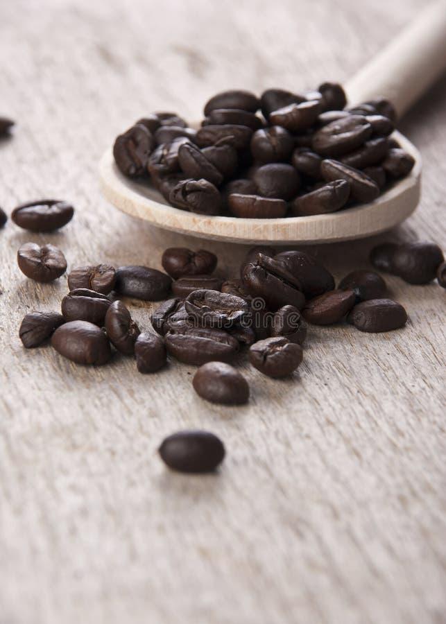 Na drewnianej łyżce kawowe fasole obrazy stock