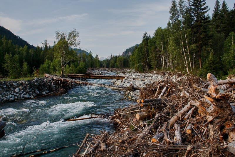 Na een vloed van de bergrivier Altai, Siberië royalty-vrije stock foto