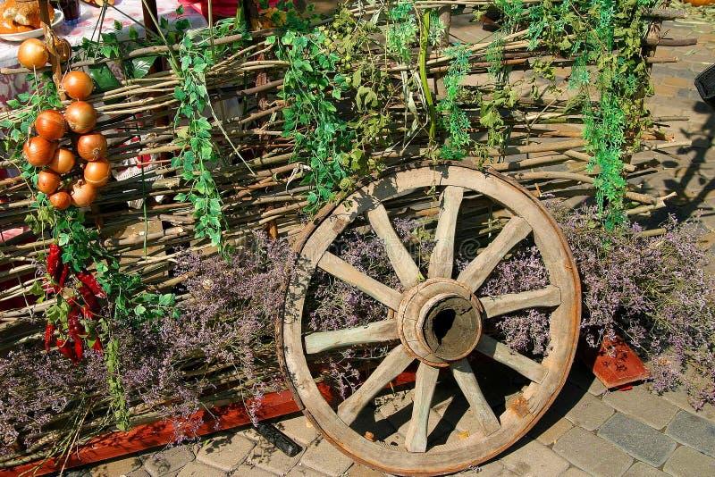 Na exposição Conversão, roda, flores selvagens imagem de stock