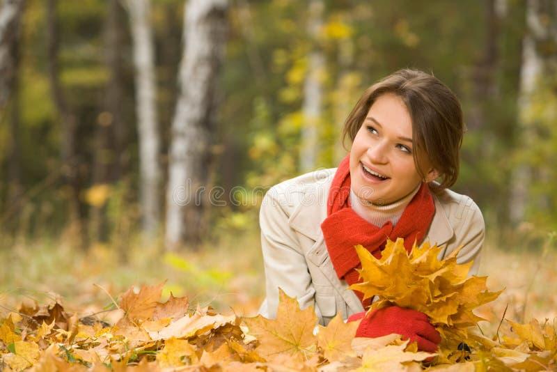 Na floresta do outono imagens de stock