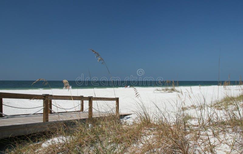 na florydę na plaży fotografia stock