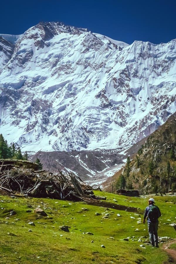 Na fuga a Nanga Parbat imagens de stock royalty free