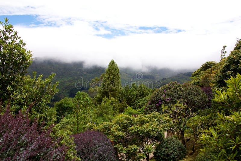 Na górze Cerro De Monserrate fotografia stock