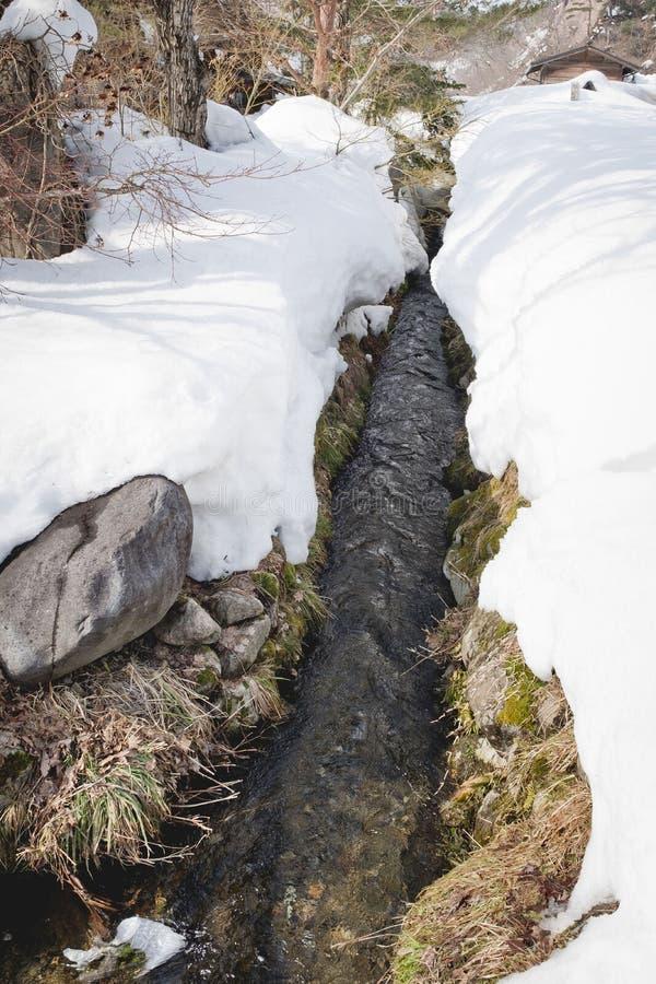 Na het landschap van het sneeuwmoerasland stock foto