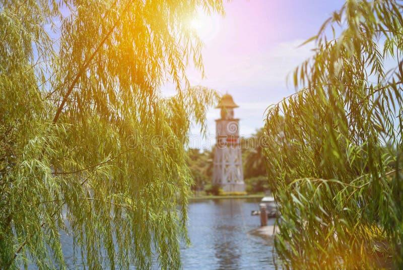 Na jeziorze na złotym światło słoneczne dniu zdjęcia stock