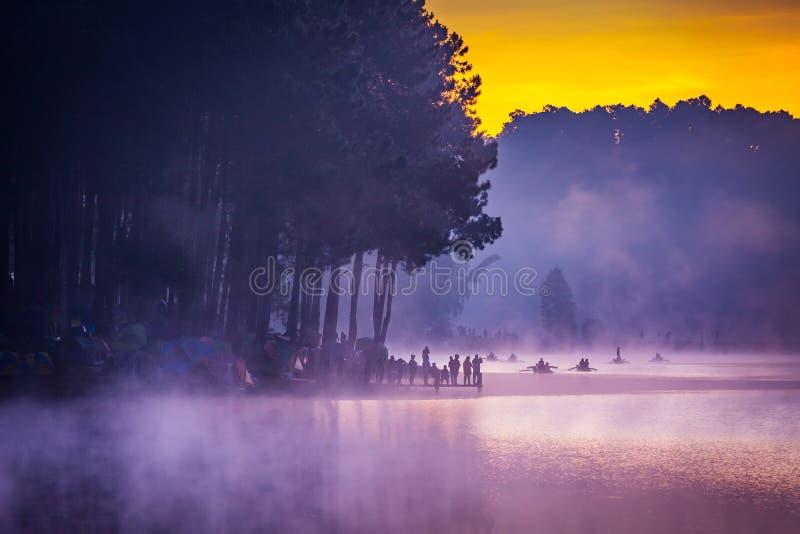 Na manhã, Pang Ung Forestry Plantations, Tailândia imagens de stock