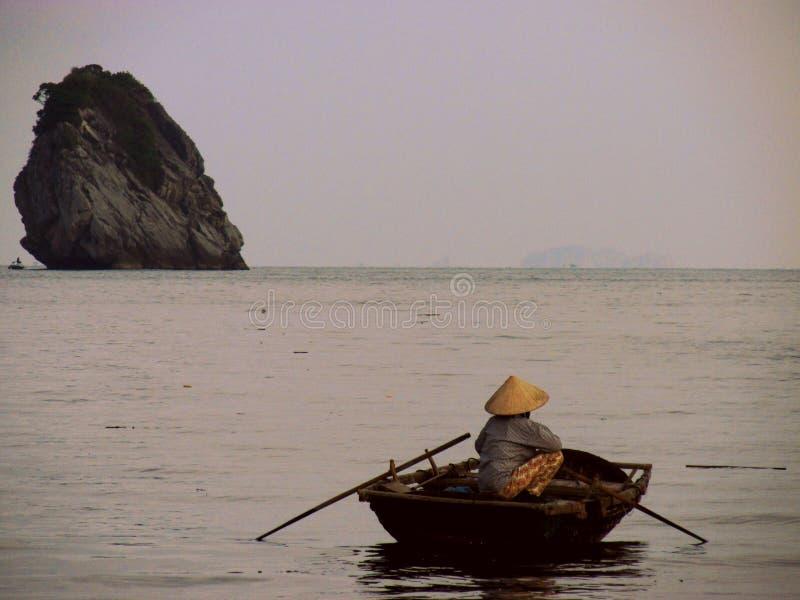 Na nawadnia brzęczenia Długo Trzymać na dystans, Wietnam fotografia royalty free
