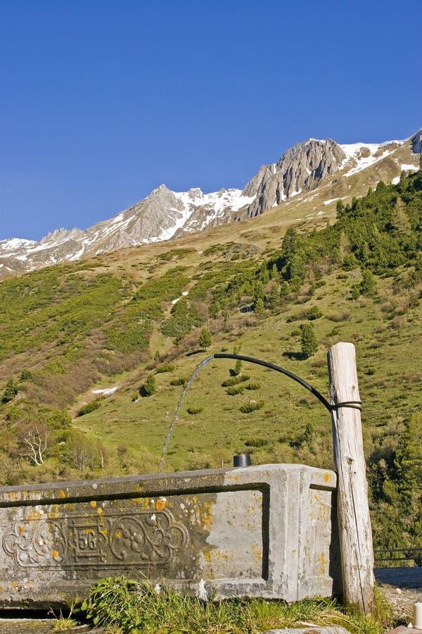 Na paśniku w Południowym Tyrol obrazy royalty free
