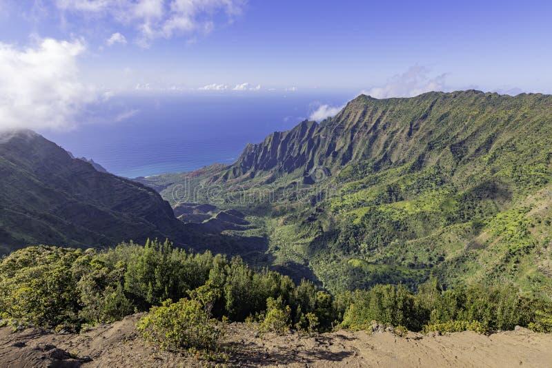 Na Pali Coast, Kalaau Lookout, Kokee State Park国家公园,美国夏威夷考艾 免版税库存照片