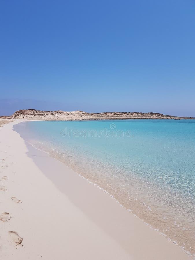 Na plaży obraz royalty free
