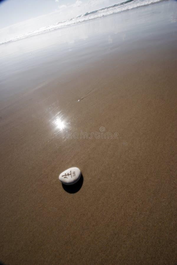 na plaży jest życie obraz royalty free