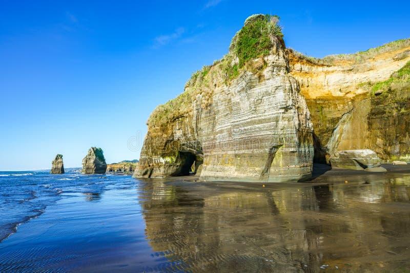 Na plaży, 3 słonia i siostry kołysają, nowy Zealand 15 zdjęcia royalty free