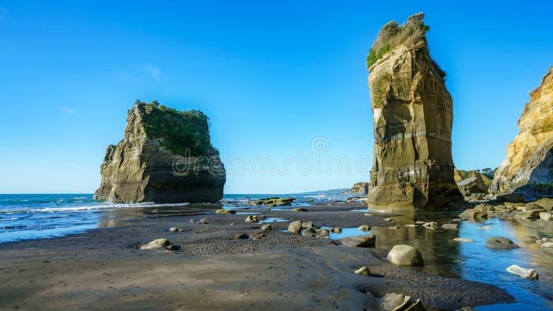 Na plaży, 3 słonia i siostry kołysają, nowy Zealand 39 obraz stock