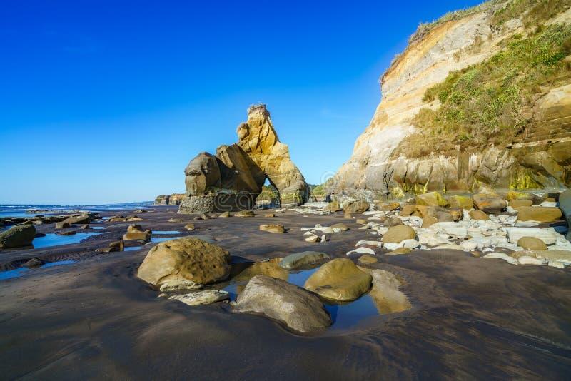 Na plaży, 3 słonia i siostry kołysają, nowy Zealand 46 zdjęcia stock