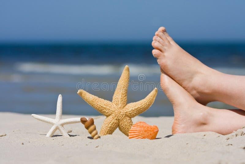 Na praia foto de stock