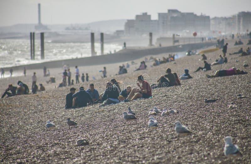 Na praia na luz do sol, Brigghton, Inglaterra imagens de stock