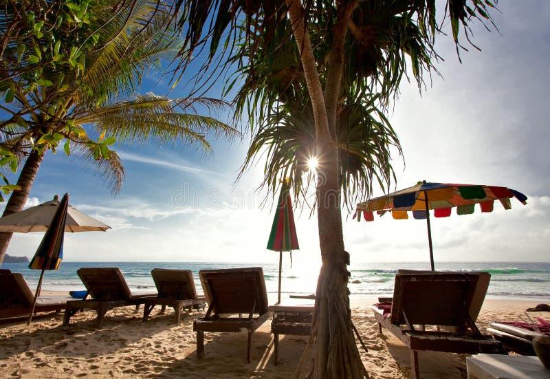 Na praia tropical foto de stock royalty free