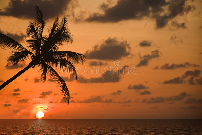 Na sonho-praia foto de stock royalty free