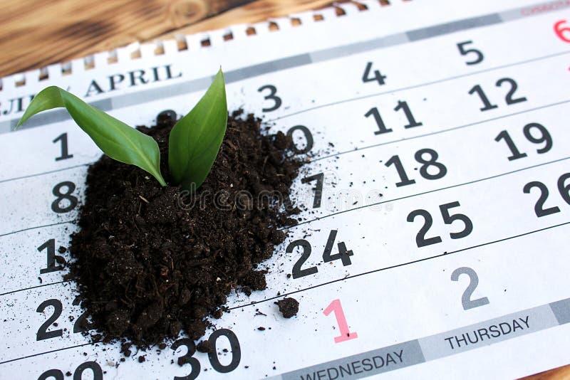 Na tabela é uma folha do calendário com uma pilha pequena da terra com um broto da planta imagem de stock