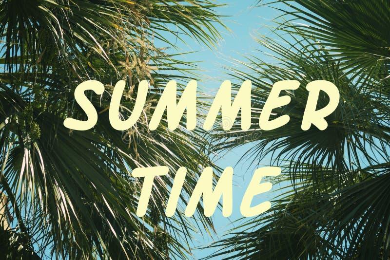 Na tle palma rozgałęzia się inskrypcję, lato czas Jaskrawy pogodny obrazek ilustracji