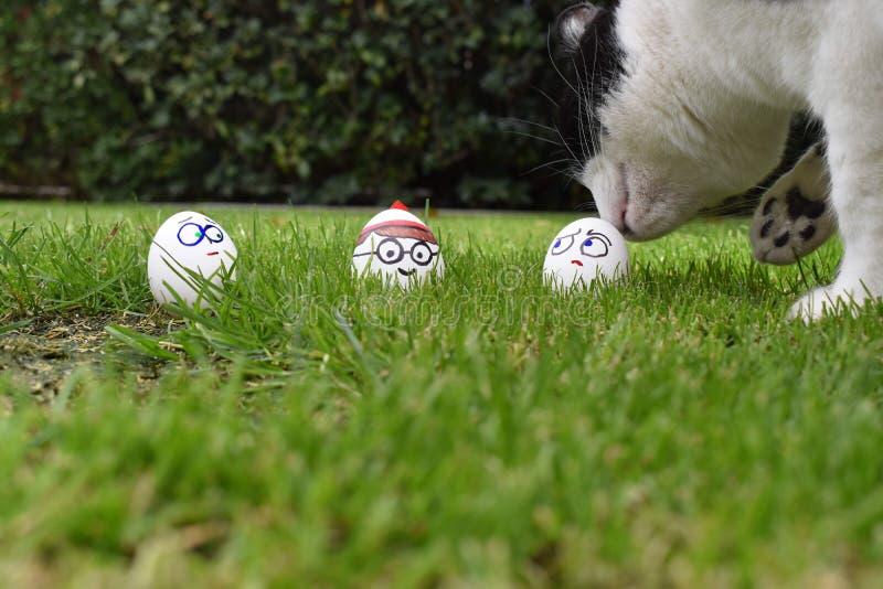 Na Wielkanocnego jajka polowaniu, chującym w trawie jest Dokąd jest Waldo, fotografia royalty free